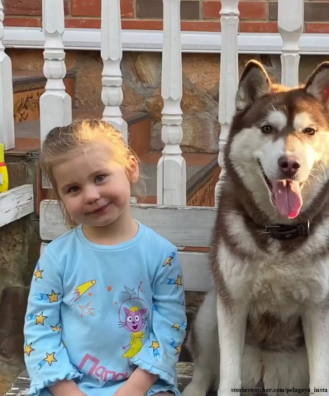 Singer Pelageya was shown touching the relations of 3-year-old daughter and dog Best