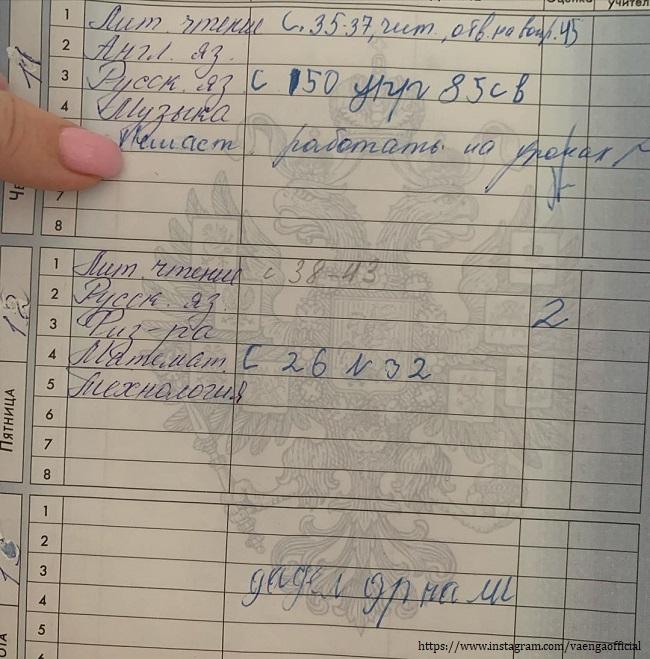 Дневник сына Елены Ваенги