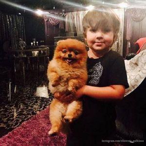 Подробнее: Максим Галкин купил сыну подарок, в который и сам рад поиграть