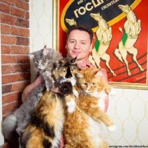 Подробнее: Александр Олешко привел в порядок своих котов, за что его осудили зоозащитники