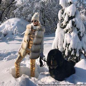 Подробнее: Собака Яны Рудковской едва не загрызла кучу людей